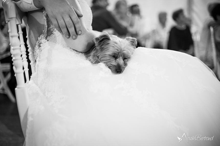 photographe-mariage_c-et-m-anais-bertrand-toulouse-105