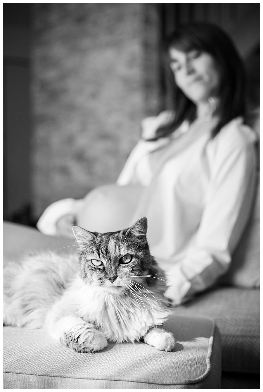 photographe-grossesse-chat-toulouse-anais-bertrand
