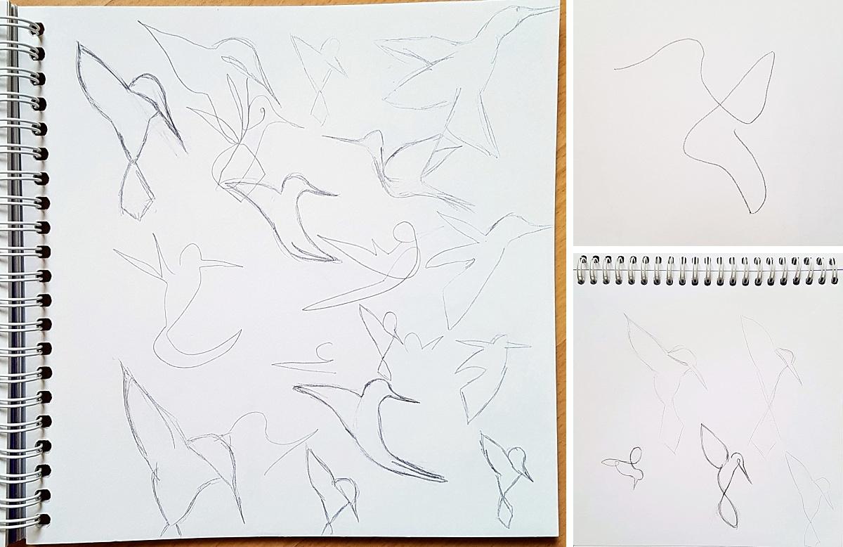 Recherches illustration colibri nouveau logo Anaïs Bertrand